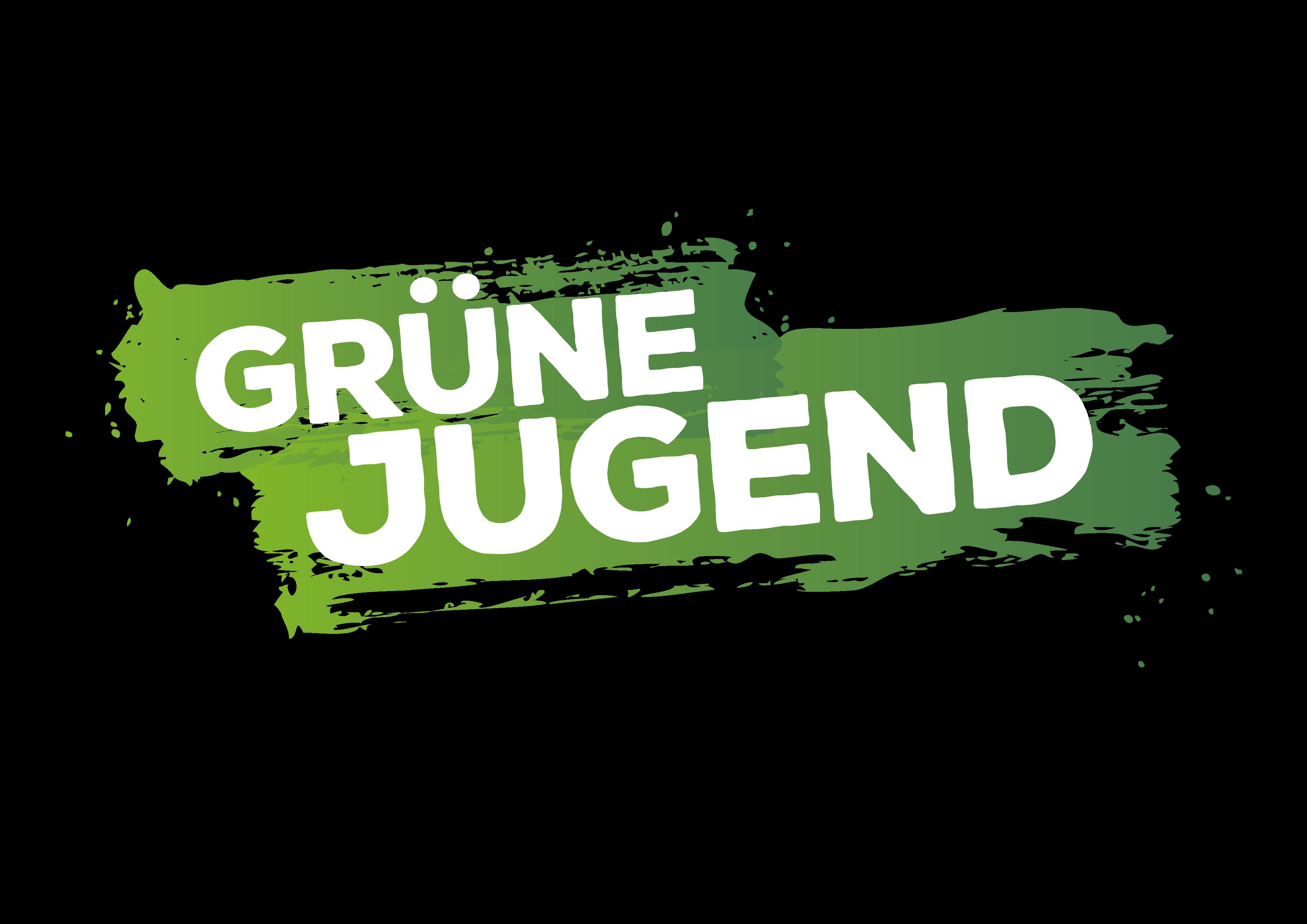 Digitales Treffen Grüne Jugend